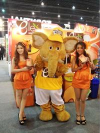Mistercup (Thailand) Co ,Ltd